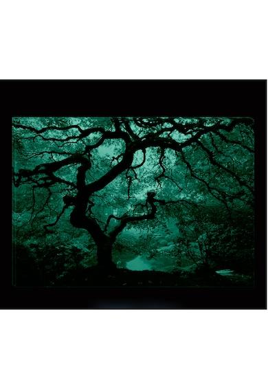 Startonight Tablou DualView  Artar Celebru, Natura, Luminos in intuneric, 70 x 100 cm Femei