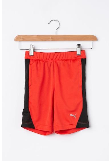 Puma Къс спортен панталон със стандартна кройка и вътрешна връзка Момчета