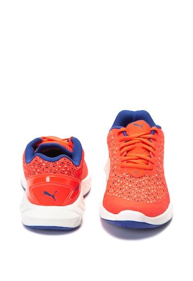 Puma Pantofi pentru alergare Ignite Ultimate Layered Femei