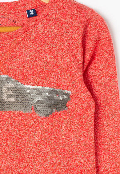 Tom Tailor Kids Bluza cu detaliu cu paiete reversibile Baieti