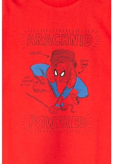 Z Kids Tricou cu imprimeu Spider-Man Baieti