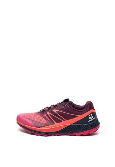 Salomon Pantofi sport pentru alergare Sense Escape 2 Femei