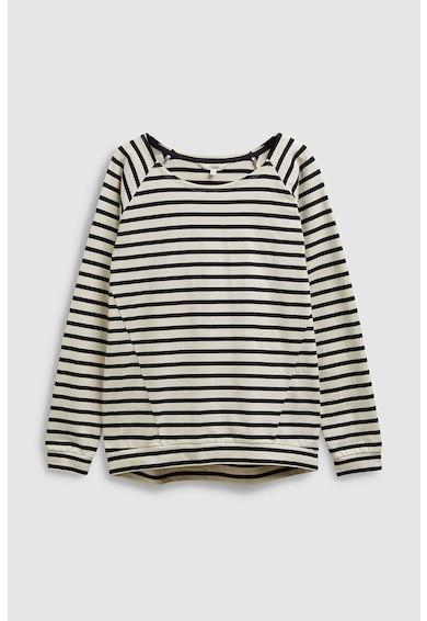 NEXT Bluza din bumbac, cu dungi Femei