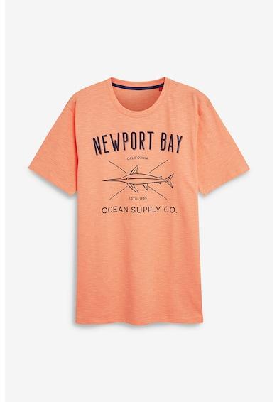 NEXT Mintás és feliratos póló szett - 3 db férfi