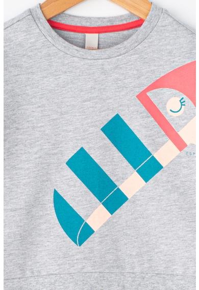 Esprit Bluza cu imprimeu cu pasari Fete