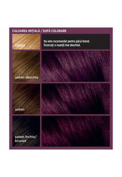 L'Oreal Paris Vopsea de par gel permanenta  Colorista Dark Purple, 204 ml Femei