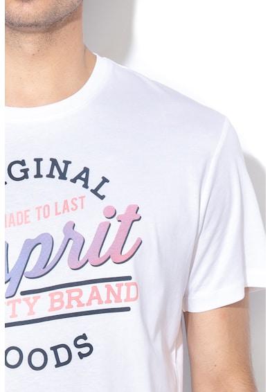 Esprit Tricou regular fit cu imprimeu Barbati