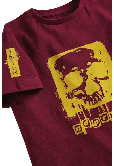 NEXT Tricou din bumbac, cu imprimeu Baieti