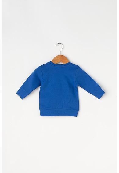 Blue Seven Bluza cu imprimeu grafic si text Baieti