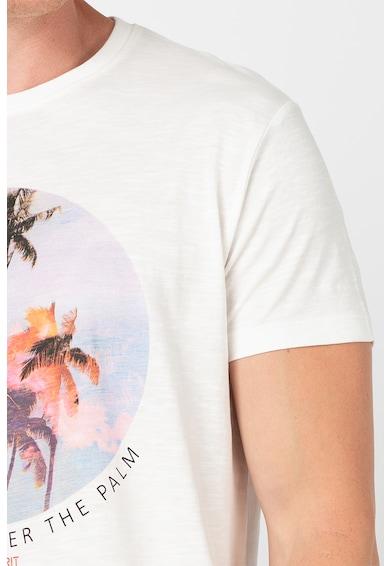 Esprit Тениска от органичен памук с фигурална щампа Мъже
