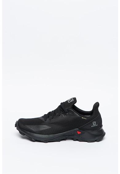 Salomon Pantofi impermeabili pentru alergare si drumetii Alphacross Blast GTX Barbati