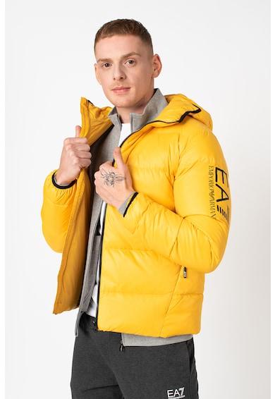 EA7 Pihével bélelt télikabát férfi