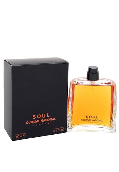 Costume National Parfum  Soul, Unisex, 100 ml Barbati