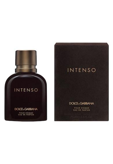 Dolce & Gabbana Apa de Parfum Dolce&Gabbana Pour Homme Intenso, Barbati, 75 ml Barbati