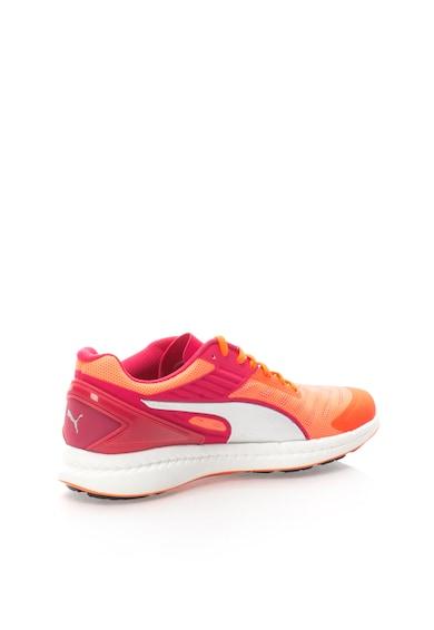 Puma Pantofi pentru alergare Elsu Ignite V2 Femei