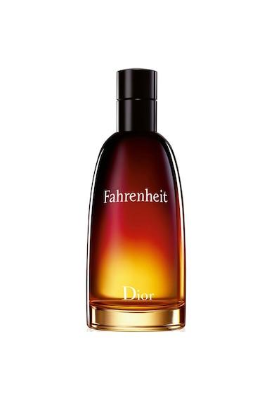 Christian Dior Apa de Toaleta  Fahrenheit, Barbati Barbati