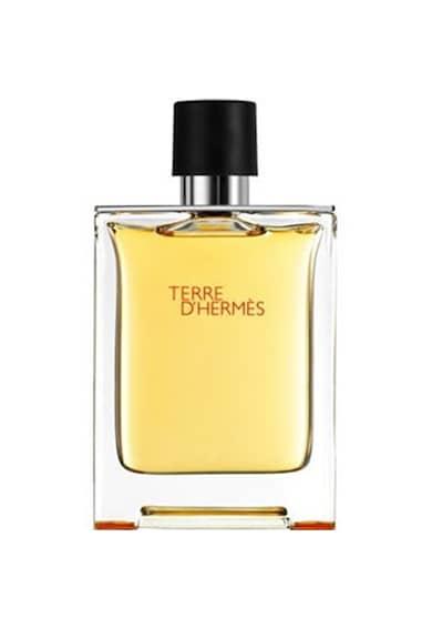 Hermes Apa de parfum  Terre D'Hermes, Barbati Barbati