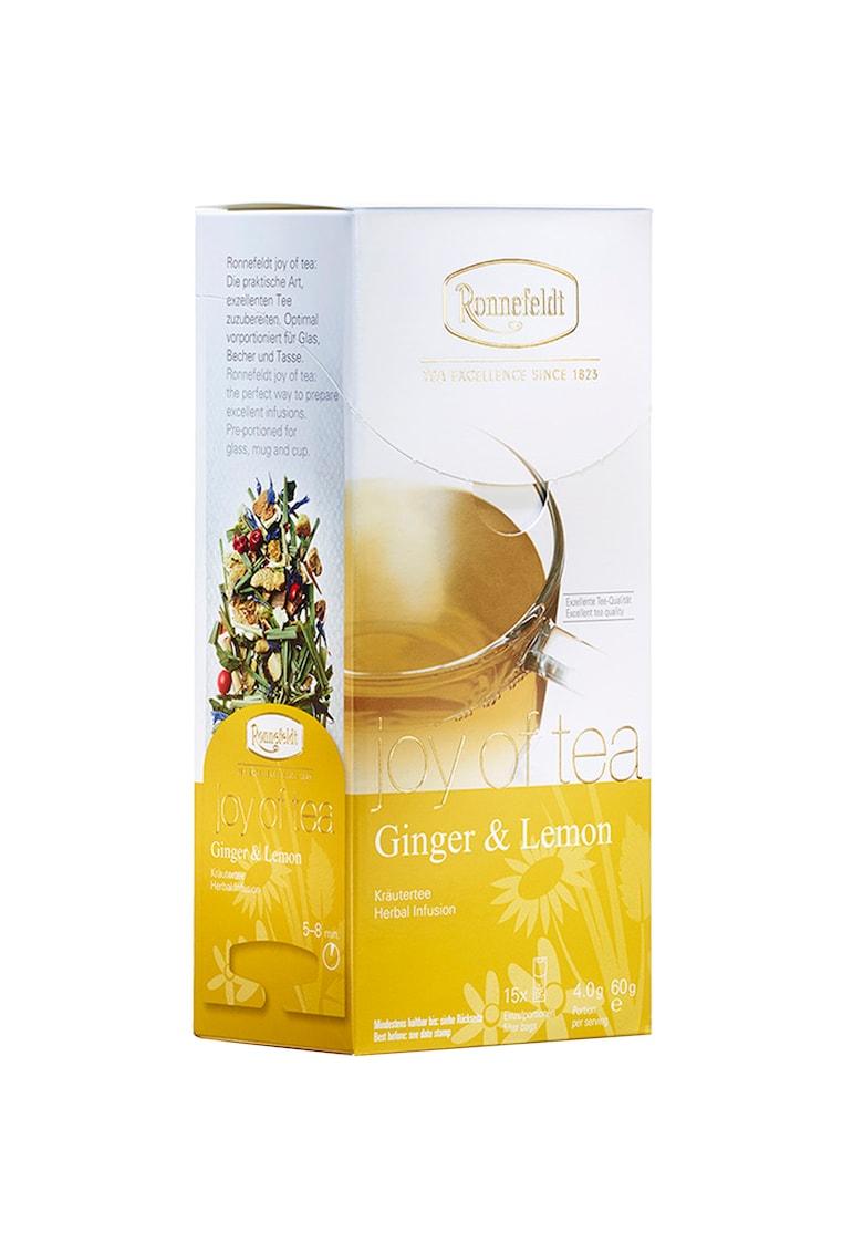 Ceai - Infuzie plante J.T.  Joy of Tea Ginger & Lemon - 15 pliculete - 60 gr.