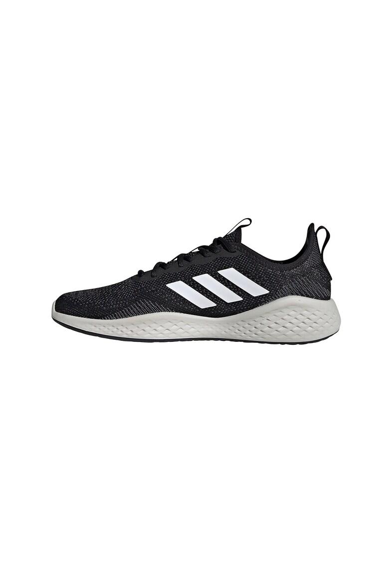 Pantofi pentru alergare Polaris