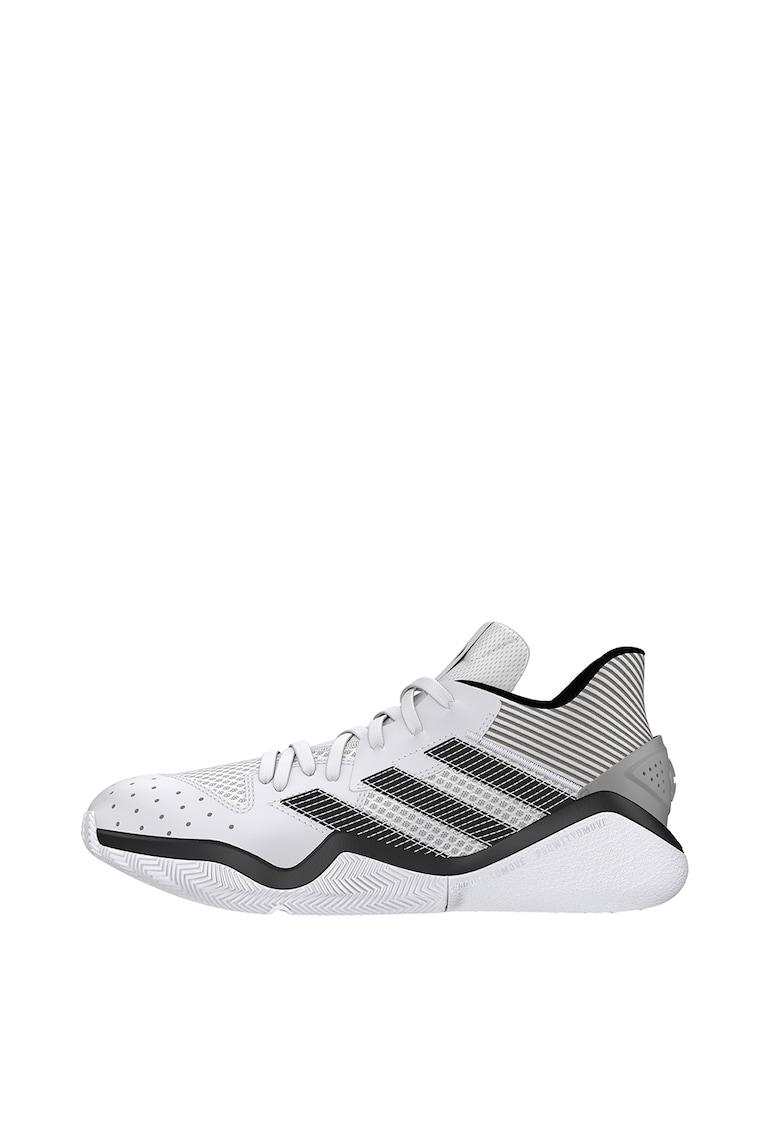 Pantofi pentru baschet Harden Stepback