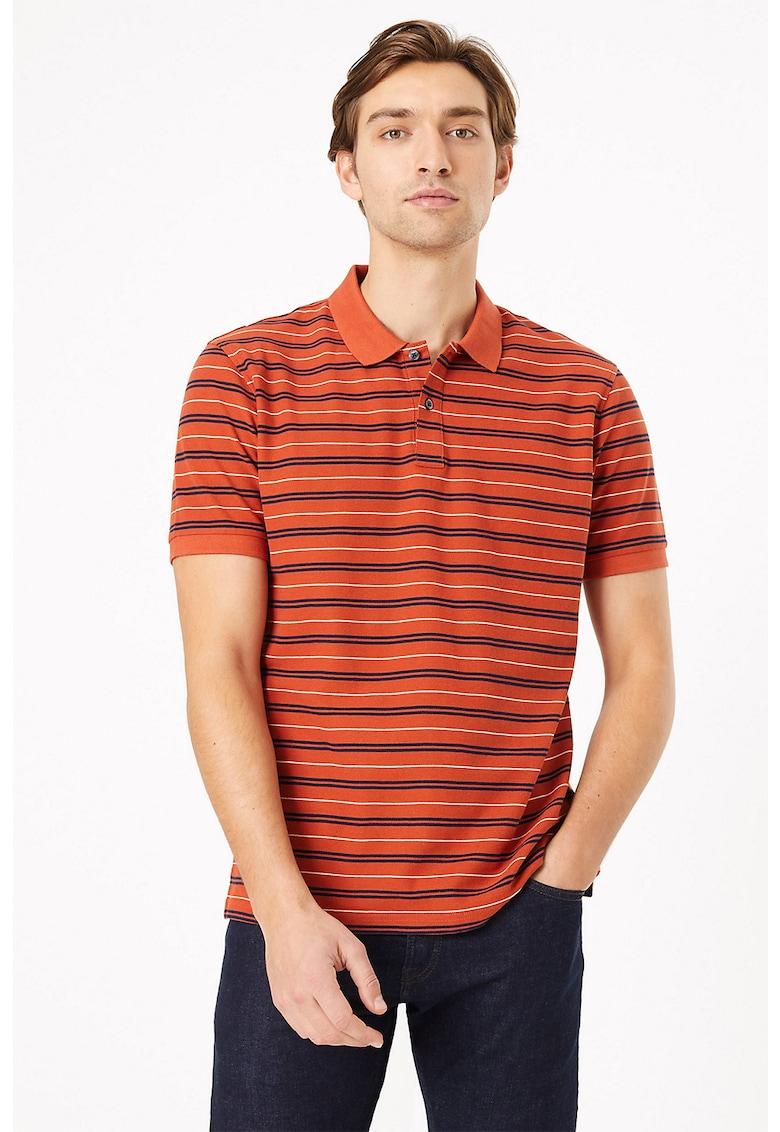 Tricou polo cu model in dungi imagine promotie