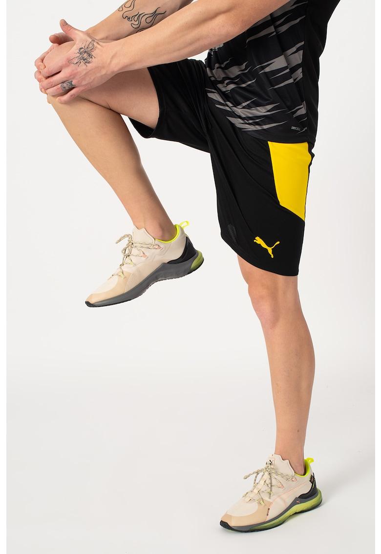 Pantaloni scurti pentru fotbal dryCELL BVB Dortmund