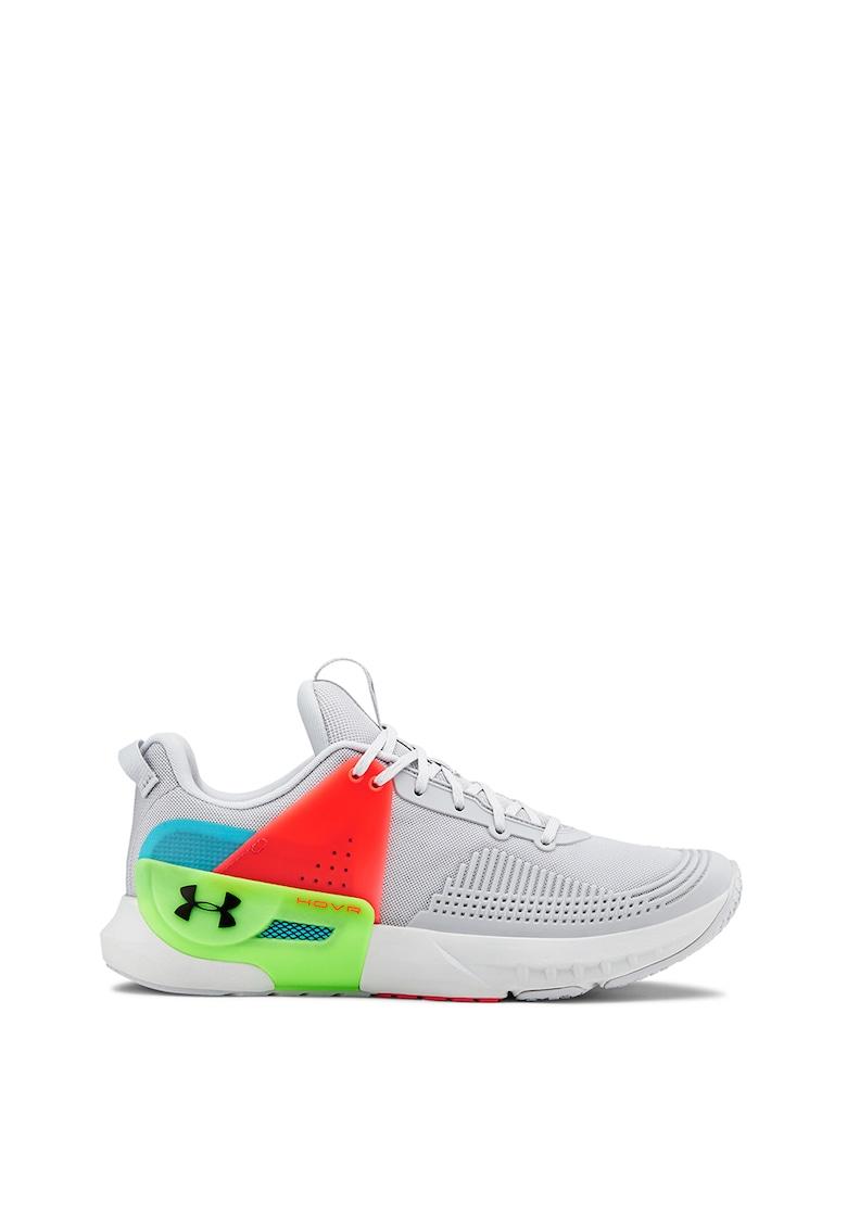 Pantofi pentru antrenament Apex imagine