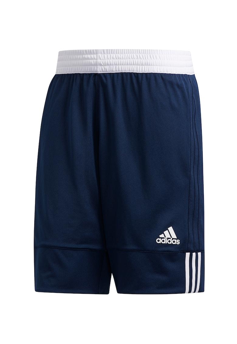 Pantaloni scurti reversibili pentru baschet Spee imagine fashiondays.ro 2021